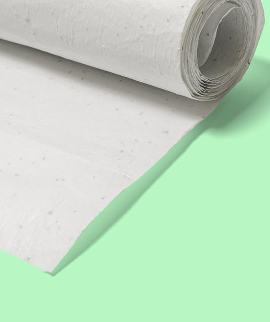 Papier cadeau ensemencé rouleau alternative biodégradable